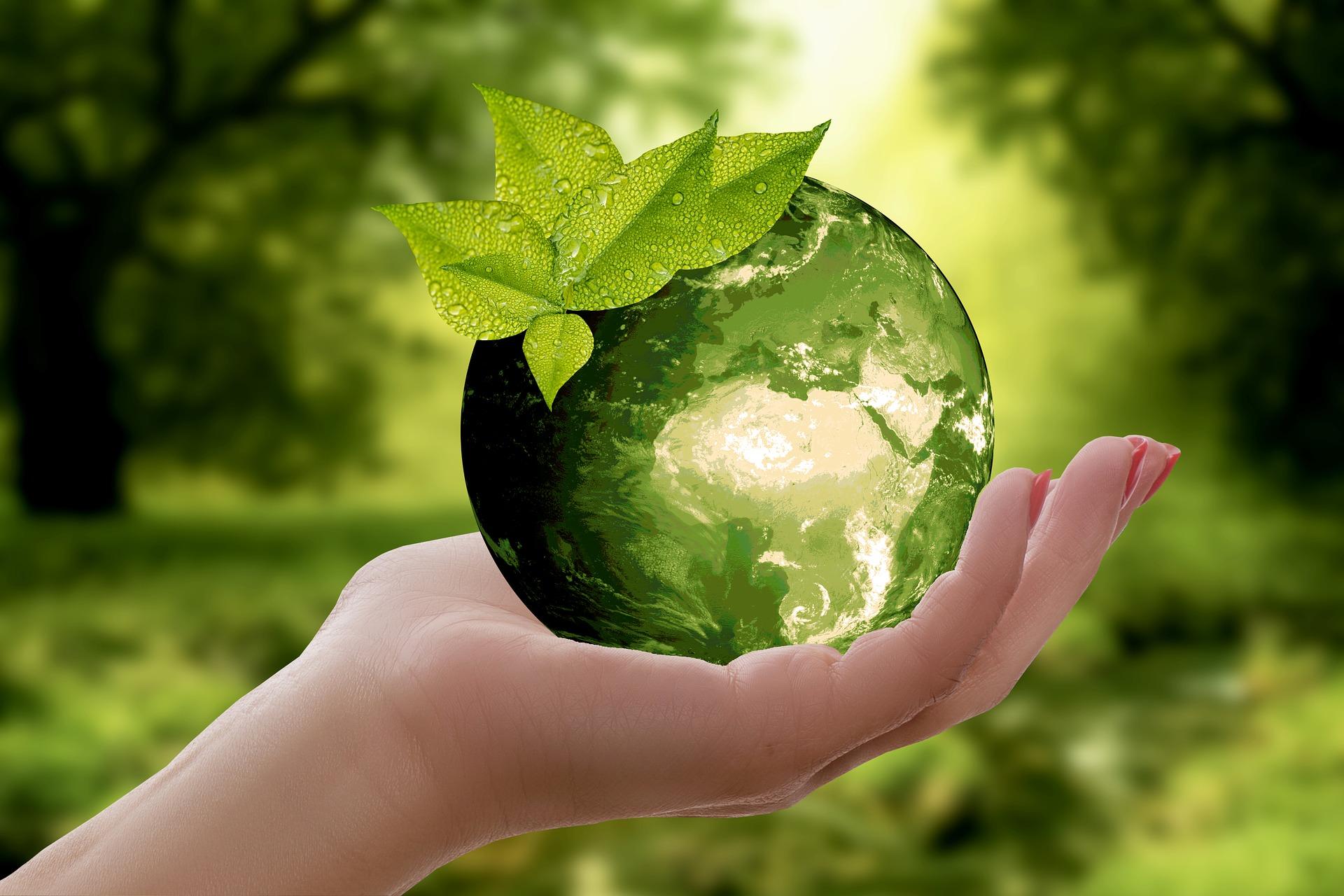 Eco-Friendly Alternatives
