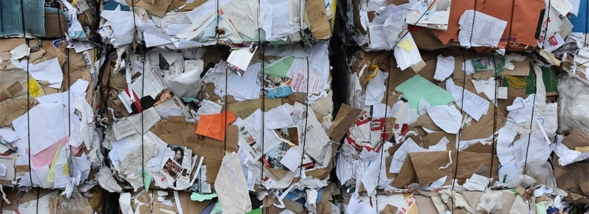Ways to Reduce Paper Waste the Green Way