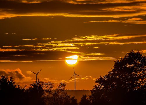5 Facts about Renewable Energy